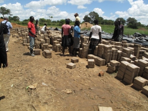 After being pressed, the bricks are cured in the sun. Once ready, they are carried to the nearby construction site.